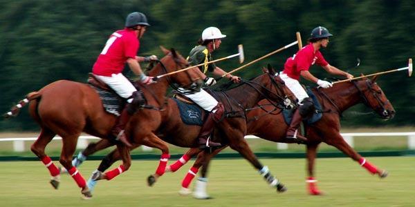 Tudo sobre as regras do Polo Equestre